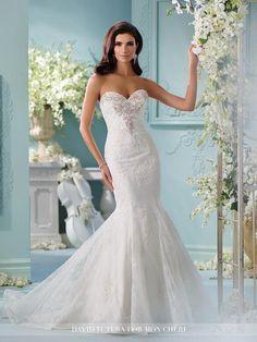 David Tutera Bridals 216253 David Tutera for Mon Cheri Bridal Our Shop Bridal & Our Shop Too Bridal – Wedding Dresses | Mothers Dresses |…