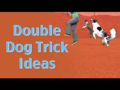 Double Dog Trick Ideas- clicker training canine freestyle