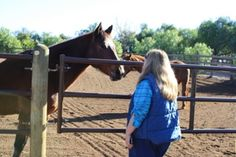 War Horse Ranch- meditating with the horses- wonderful experience!