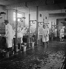 """El conocido como """"Lavadero Humano"""" ubicado en un antiguo establo reconvertido tras la liberación en hospital. En él un equipo de médicos y enfermeras alemanas limpiaban y despiojaban a los enfermos de Bergen-Belsen."""