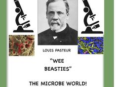 Science Resources, Teaching Resources, Louis Pasteur, Primary Science, Biology, Chemistry, Physics, How To Plan, Physique