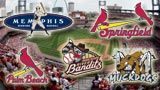 St. Louis Cardinals have acquired the Memphis Redbirds and the city of Memphis has acquired AutoZone Park, hopefully ensuring the Redbirds are in Memphis for a long, long time. PLAY BALL!