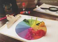 Simple as that blog | colors in nature. Love! This would be so fun to take on walks.