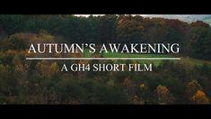 Autumn's Awakening: A Scenic GH4 Short Film - YouTube
