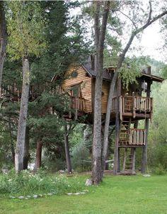 I want this tree house.....
