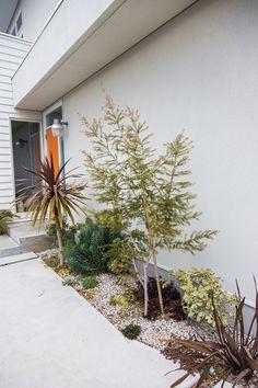 エントランス脇には、南カリフォルニアの乾燥した風景を連想させる植栽が施されている。