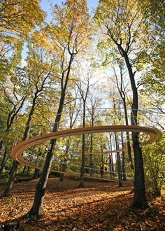 A floating boardwalk in a forest known as Kadriorg.  Located in Tallinn, the capital of Estonia, by Tetsuo Kondo Architects