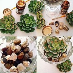 Teaser pic for another one of our fun & easy DIY wedding & party projects. These Gold tipped river stones & succulents in antique glass make unique and beautiful favors and cardholders for your tablescape! These are faux succulents so you can pack them away after each event! So cost effective and convenient for the thrifty, crafty trendsetter ! #diywedding Design by How To DIY Life diyweddingplanner