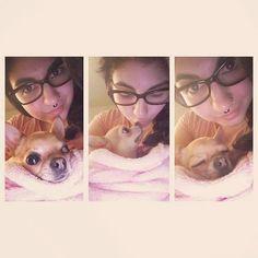 I can only sleep getting my good night kiss from mama! Good night furiends! 안녕 히 주무세요! #chihut #chihuahua #mylove #사랑해 #helsinki #pets #chihuahuasofinstagram #chihuahualife #petsagram #chihuahuaoftheday #cutechihuahua #lovechihuahuas #chihuahualovers #crazyforchihuahuas #littledog #cutie #smalldogs #söpö #pikkuchihu #söt #dogstagram #chihuahualife #치회회  Photo By: chili_the_chihu  http://bit.ly/teacupdogshq