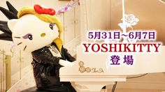 Yoshikitty