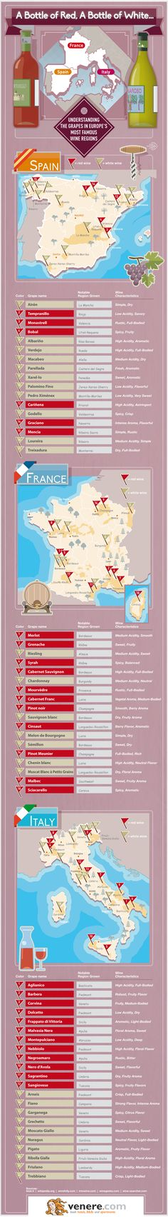 Understanding The Grapes In Europe's Most Famous Wine Regions