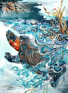 Ice Turtle - illustration by Jacqui Oakley