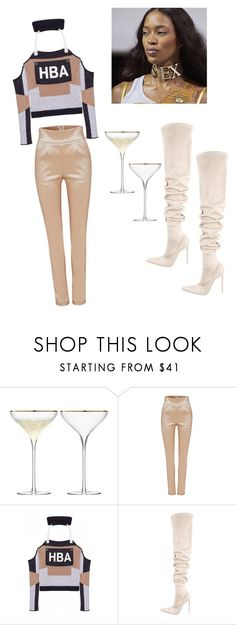"""The sex"" by astrro on Polyvore featuring Hood by Air and Gianvito Rossi"