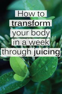 How to transform your body in a week through juicing