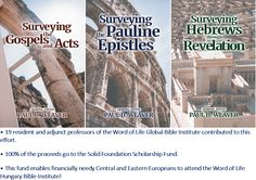 Surveying the New Testament series