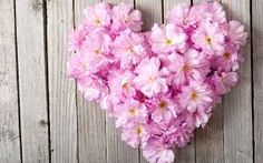 This HD wallpaper is about Pink flowers, love heart, wood board, Original wallpaper dimensions is file size is