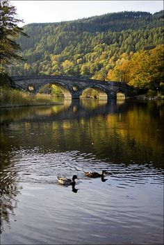 Beautiful lake and bridge at Scotland. Quite; a true place to think~