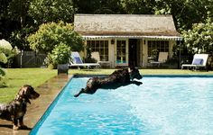 Featured in Vogue- Locust Valley NY