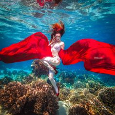 Glamourous and captivating photo by Rafal Makiela Photography by Production Paradise #Underwater #Photography