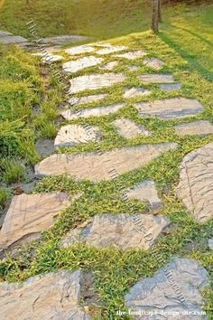 find this pin and more on garden and backyard ideas flagstone path