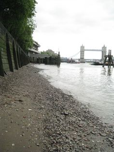 beachcombing finds | Beachcombing finds on the Thames