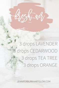 Why finding the perfect Essential Oil Recipes will refresh your mindy, body and soul. These are my favortie essential oil recipes to diffuse. Essential Oils Guide, Essential Oil Uses, Doterra Essential Oils, Young Living Oils, Young Living Essential Oils, Essential Oil Combinations, Aromatherapy Oils, Aromatherapy Recipes, Essential Oil Diffuser Blends