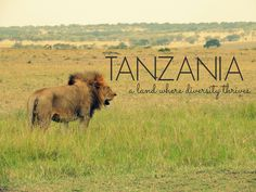 Tanzania: A Land Where Diversity Thrives via The Wandering Soles Round The World Trip, Our World, World Traveler, Tanzania, Diversity, Us Travel, Cool Photos