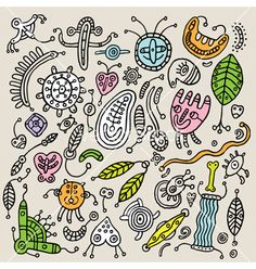 Doodle Flowers Clipart and Vectors - Google Search