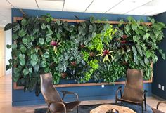 Fabulous wall planters indoor living wall ideas 42 - Your succulent garden is currently finished! Normally, mass-produced pots are somewhat more affordable. Planters are large pots meant for holding plants, brings a distinctive glam to the house decor. Plant Wall, Plant Decor, Indoor Plants Low Light, Plants Indoor, Artificial Garden Plants, Artificial Flowers, Vertical Garden Wall, Vertical Gardens, Garden Tool Storage