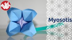 Origami - Myosotis - Forget-Me-Not [Senbazuru]