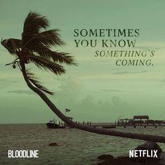 Bloodline 3. Sezon Onaylandı
