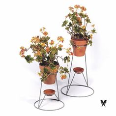 House Plants Decor, Plant Decor, Garden Design Ideas On A Budget, Stone Crafts, Green And Gold, Hair Pins, Planter Pots, Product Design, Lovers
