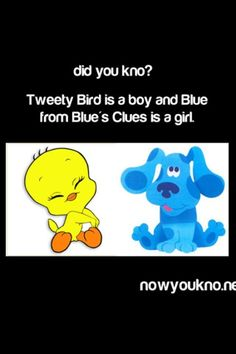 Everyone knows that! lol I used to get into fights in school because of the Blue's clue's thing.lol (not me but to hilarious to erase) Childhood Ruined, Right In The Childhood, Childhood Memories, Funny Quotes, Funny Memes, Hilarious, Jokes, Stupid Funny, Blue's Clues