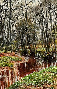 Peder Mønsted: Spring day in the forest with fresh