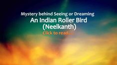 Indian Roller Bird or Neelkanth Dream Meaning