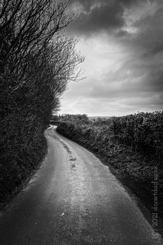 Taken on one of my walks in the Dorset countryside. #blackandwhite #dorset #photography #photooftheday #monochrome #countryside #blackandwhitephotography Black And White Photography, Walks, Countryside, Monochrome, Comedy, Creativity, Country Roads, Adventure, Black White Photography