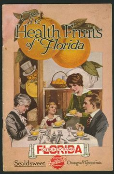 vintage Florida 1916