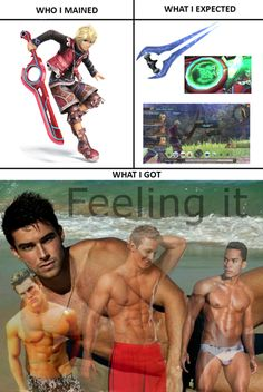 What I Expected Super Smash Bros. << I don't usually repin these but this is too funny and I'm a shulk main sooooo yeah