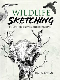 Wildlife Sketching by Frank J. Lohan  For every artist who longs to capture the beauty of nature on paper, here is clear, concise instruction on creating true-to-life drawings. Author Frank Lohan, an experienced teacher, stresses perceptive study and analysis.