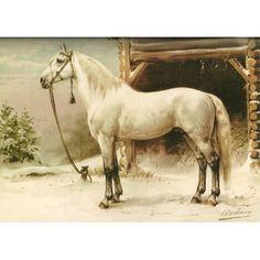 Horse in Snow Canvas Art - Otto Eerelman (18 x 24)