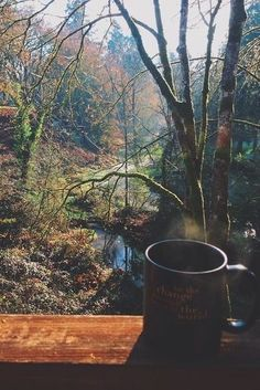 ¿Te imaginas tomar un café aquí? Do you imagine how could be to drink your coffee there? Relax, Cabin In The Woods, Coffee Love, Coffee Shop, Coffee Coffee, Coffee Break, Image Hd, Morning Coffee, The Great Outdoors