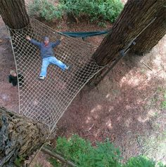 Mega Tree Hammock by Barbara Butler