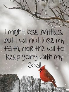 I might lose battles quotes God life bird faith Christian