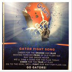 Orange and Blue Fall Football, College Football, Florida Gators Football, Gator Football, Gator Game, Fight Song, Sports Fanatics, Play N Go, Florida Girl