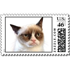 Grumpy cat goes postal!