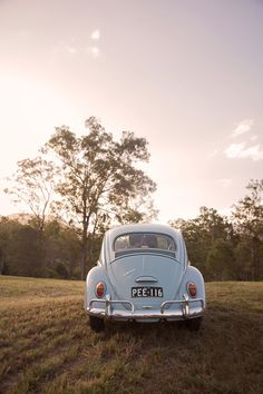 Vintage VW Bug engagement shoot. Quince and Mulberry Studios.