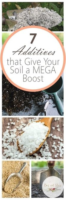 Tips For Composting 7 Additives that Give Your Soil a MEGA Boost - These soil additives for raised garden beds are just what your garden soil needs to stay healthy. If you aren't using these soil additives, you should be! Garden Soil, Edible Garden, Raised Garden Beds, Lawn And Garden, Garden Plants, Garden Arbor, Garden Spaces, Growing Flowers, Growing Plants