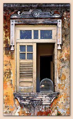 Faded Glory - Salvador, Bahi, Brasil...door complete with birdcage