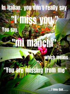 "In Italian, you don't really say ""I miss you.""  You say, ""mi manchi"" which means ""You are missing from me""....I love that......"