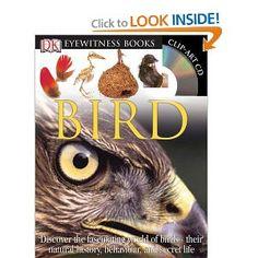 Bird (DK Eyewitness Books) Ornithology Book 2